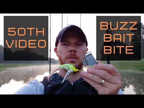Buzz Bait Bass Fishing   Lake Holcomb