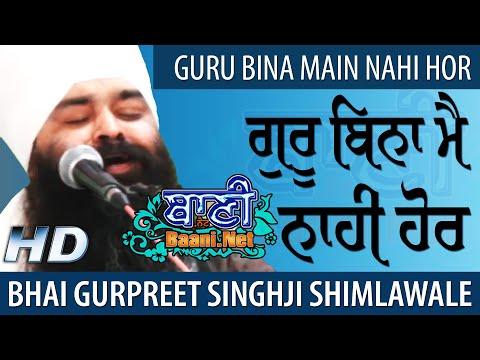 Guru-Bina-Bhai-Gurpreet-Singh-Ji-Shimla-Wale-Jamnapar