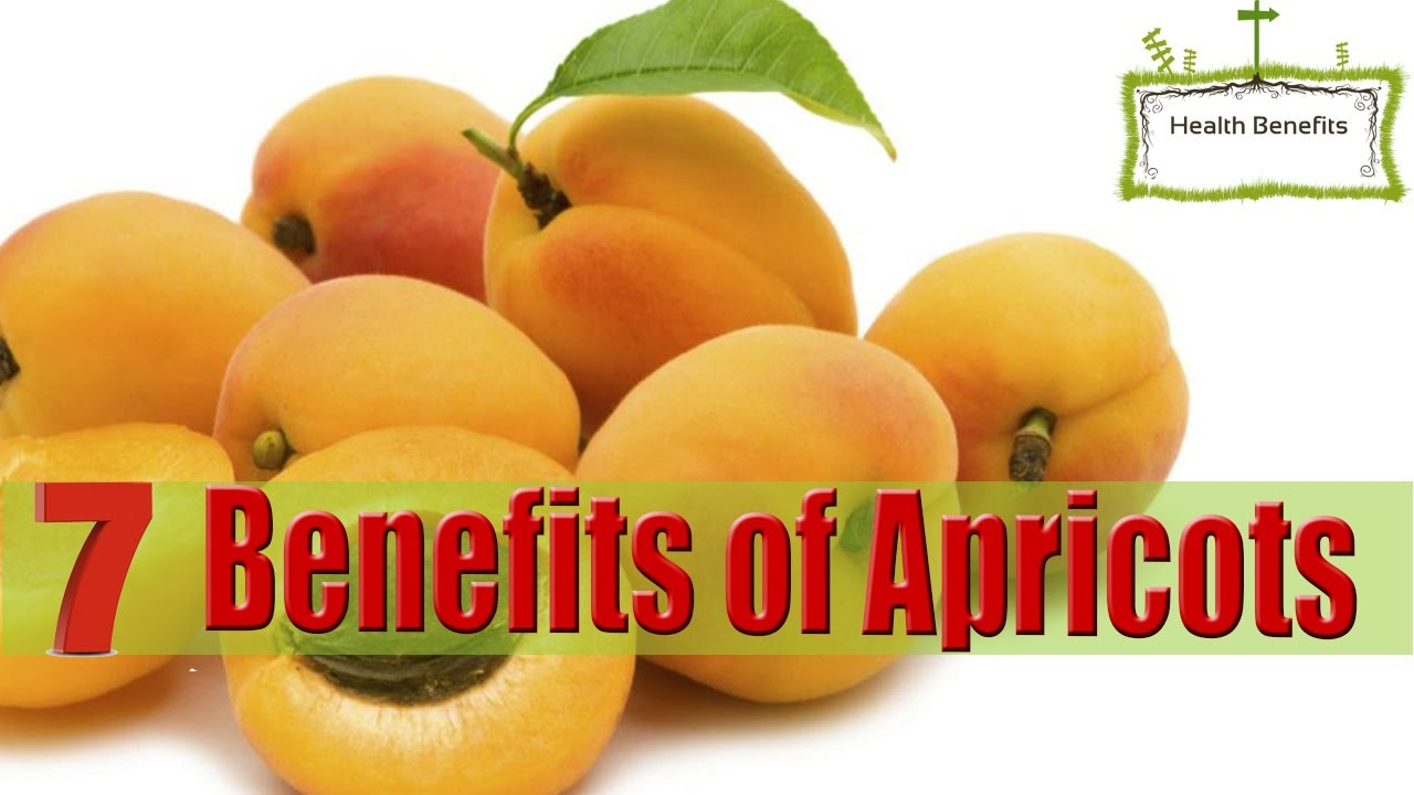 17 Impressive Benefits Of Apricot – The Nutrient-Rich Fruit Everyone's Talking About foto