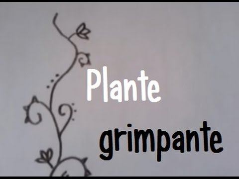 dessiner une plante grimpante youtube. Black Bedroom Furniture Sets. Home Design Ideas
