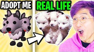 LankyBox Watches ADOPT ME IN REAL LIFE PART 5!? (LEGENDARY ADOPT ME PETS IN REAL LIFE!?)