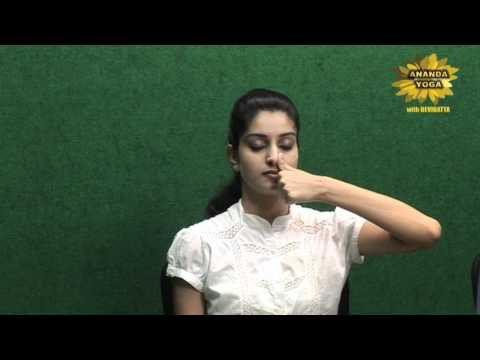 Yoga For Beginners Simple Breathing Exercise