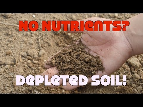 Our Soils Are Depleted Of Nutrients! Myth Or Fact?