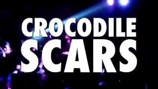 Watch Chicosci Crocodile Scars video