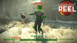 Highlight Reel #170 -  Fallout 4 Encounter Escalates Quickly