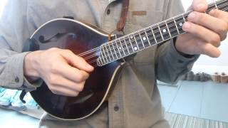 Pick Direction - How To Play Jigs - Mandolin Lesson