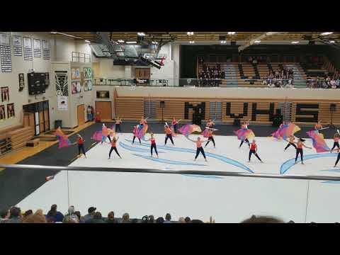 2018 Fishers Highs School A Winterguard - IHSCGA State Pre-lims