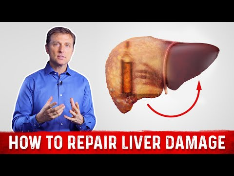 How to Repair Liver Damage after Alcohol