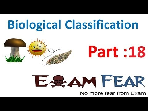 Biology Biological Classification part 18 (Fungi types:basidiomycetes, Deuteromyctes) CBSE class 11