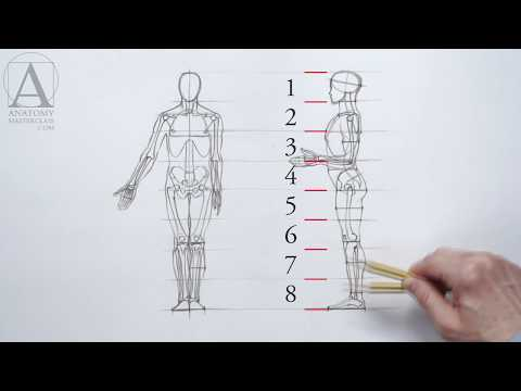 Human Figure Proportions Anatomy Lesson For Artists Youtube