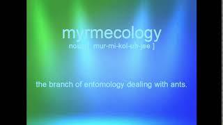 myrmecology