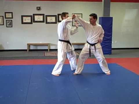 shotokan karate self defense techniques pdf