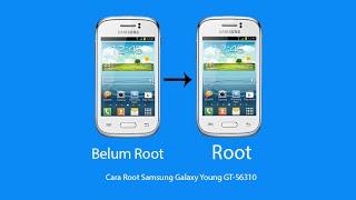 cara-root-galaxy-young-s6310