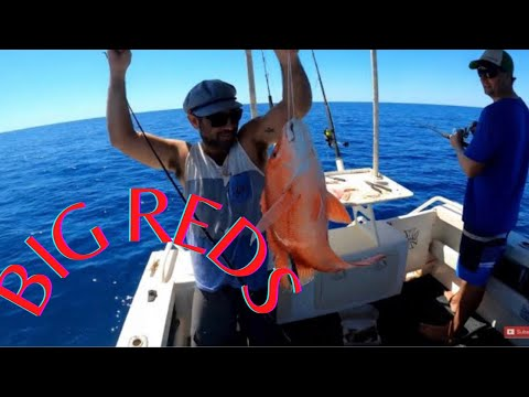 RED EMPEROR FISHING WESTERN AUSTRALIA 2.0