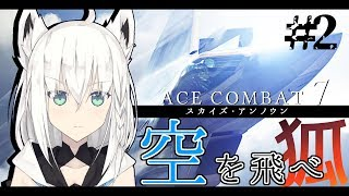 ACECOMBAT7-空を飛べ狐-その2【#PSストア_スプリングセール2019】