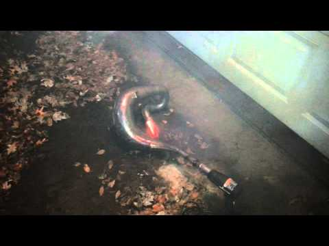 How to clean a 2 stroke pipe