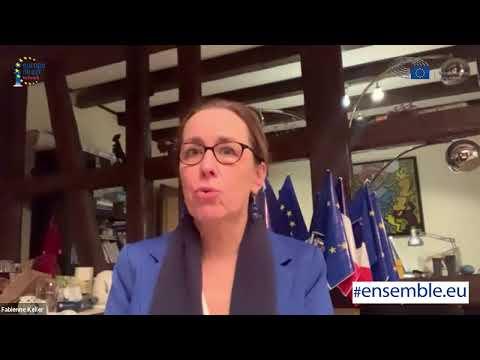 Démocratie, état de droit : l'Europe est-elle garante des libertés et des droits fondamentaux ?