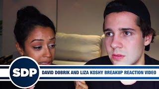 David Dobrik and Liza Koshy Breakup Reaction Video