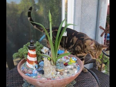 Bengal Cats / Sea of Love Mini Garden Blooms!
