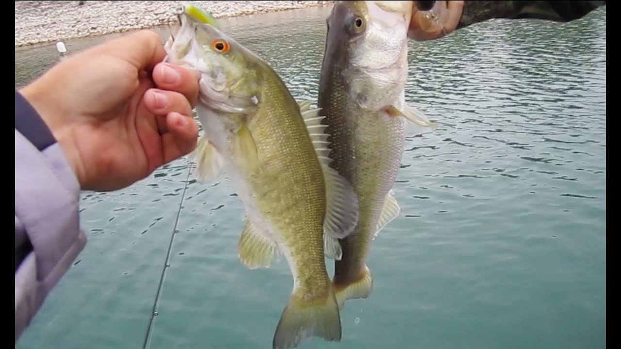 Spring bass fishing for largemouth and smallmouth youtube for Spring bass fishing
