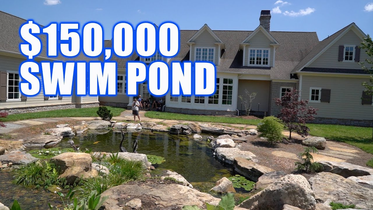 Koi pond that you can swim in greg wittstock the pond for Koi pond you can swim in
