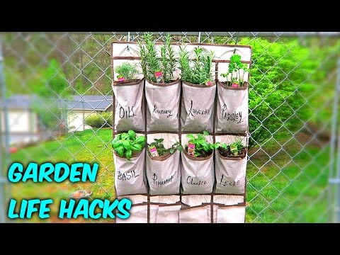 6 Gardening Life Hacks - Earth Day Special