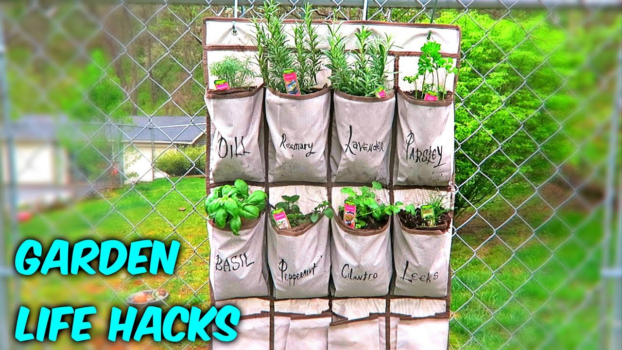 Beau 6 Gardening Life Hacks   Earth Day Special   YouTube