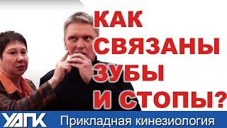 СТОПА и челюсть. Какая связь? проф.Васильева поясняет