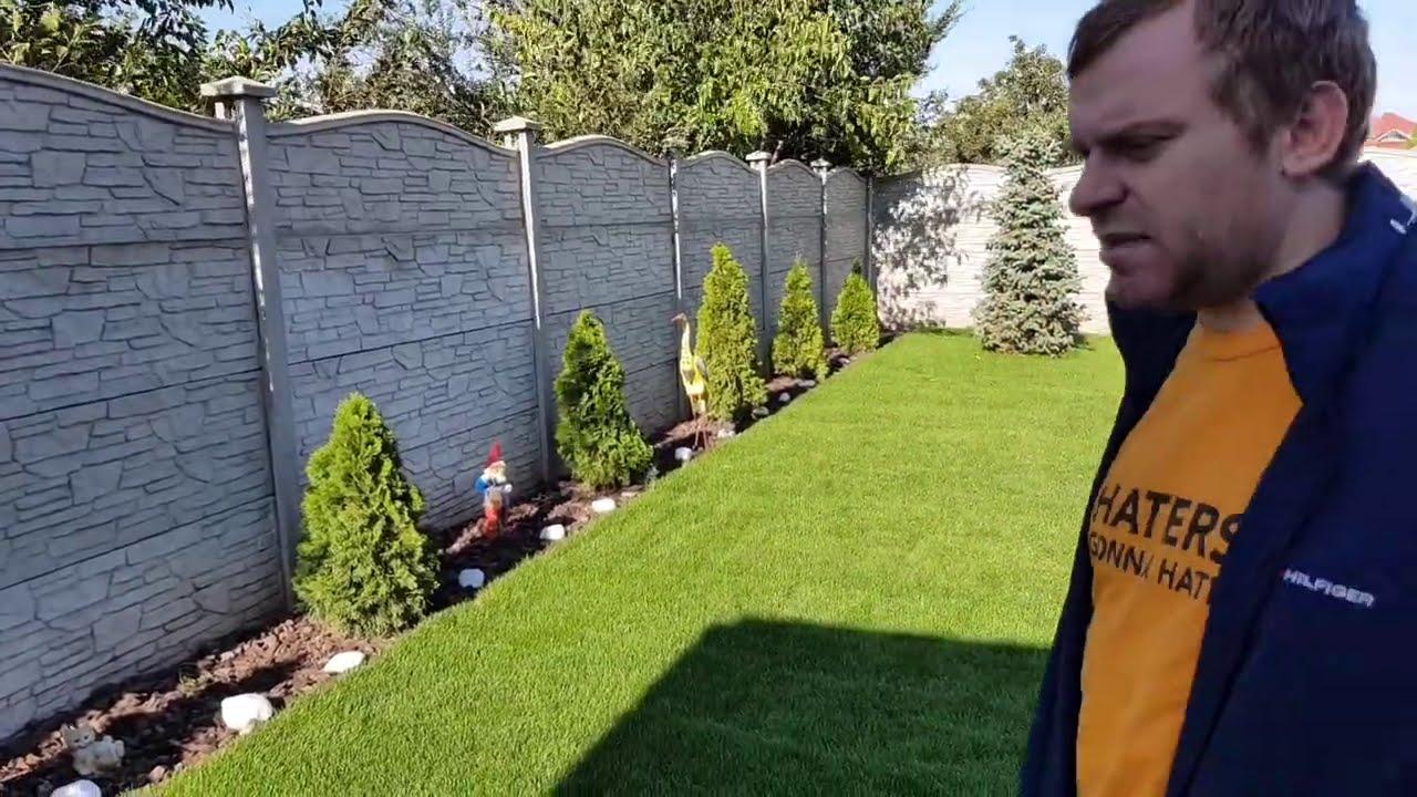 Решили подстричь газон но ума не хватает