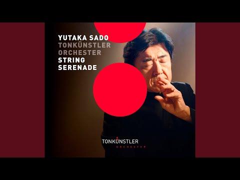 Serenade For Strings In C Major, Op. 48, TH 48: II. Waltz. Moderato Tempo Di Valse