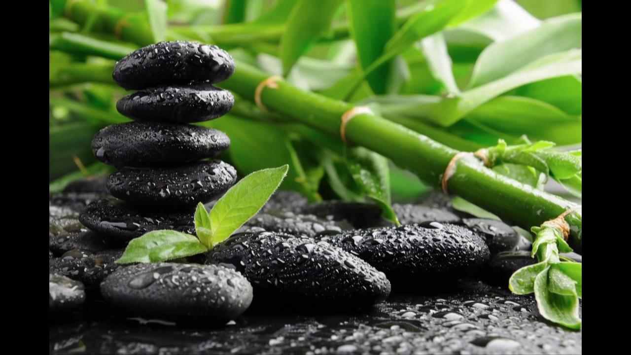 Secrets of zen japanese chill out youtube - Image zen nature ...