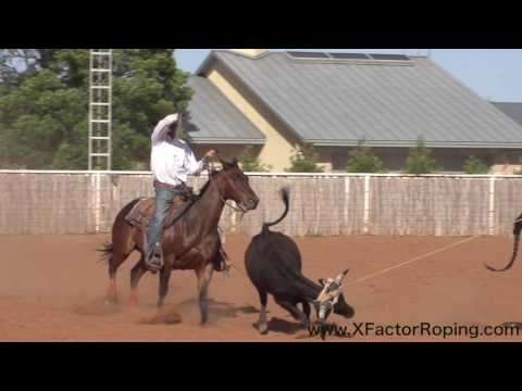 Slowing A Heel Horse Down And Softening Them Up