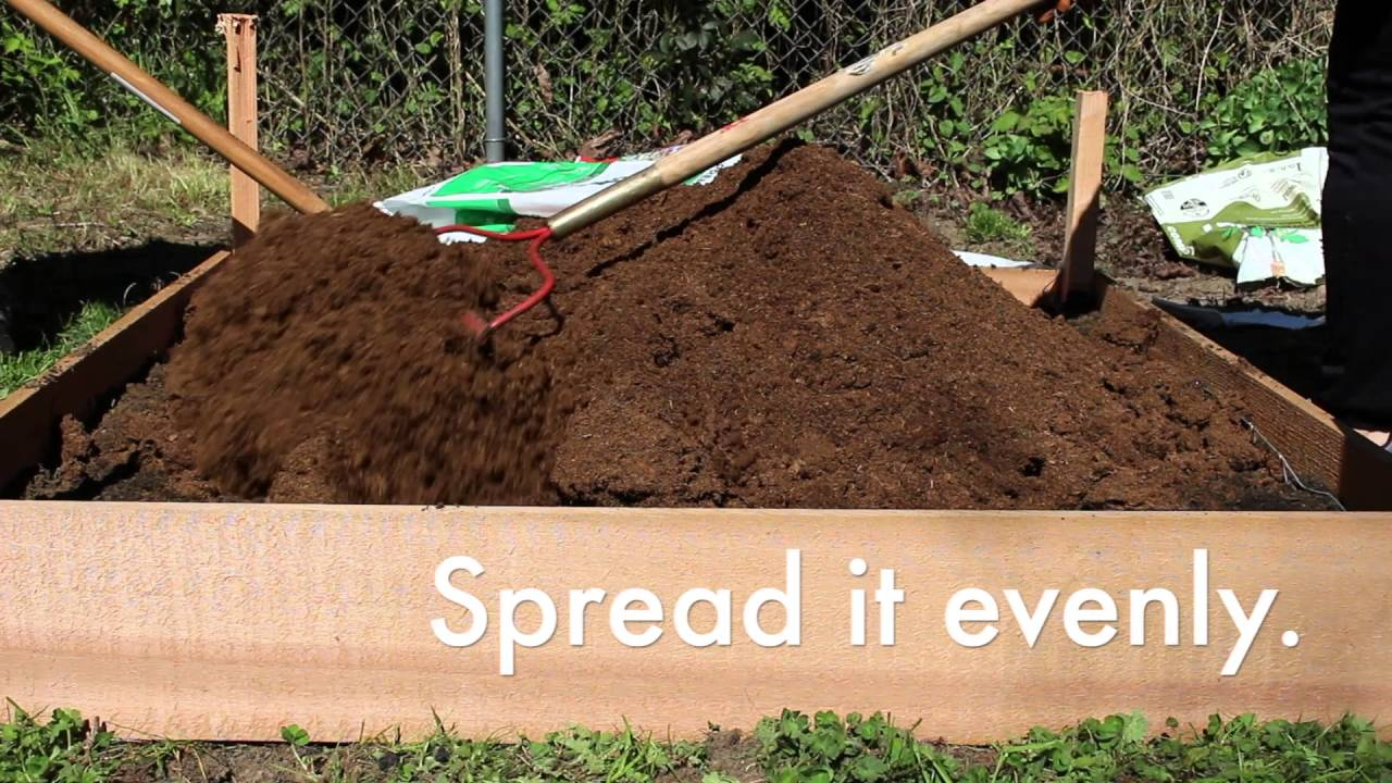 How to Build a Garden Bed - YouTube
