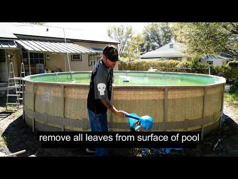 cleaning a green above ground pool