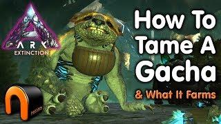 Ark Extinction How T๐ Tame A Gacha