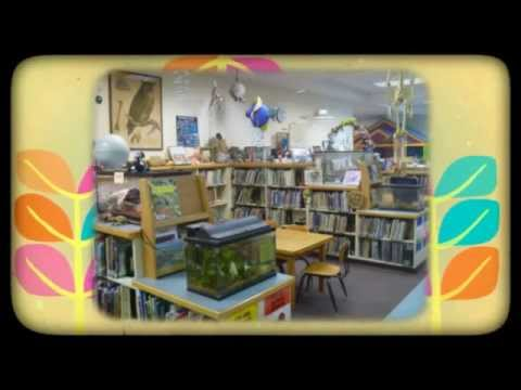 A Visit to Orchard School's Library