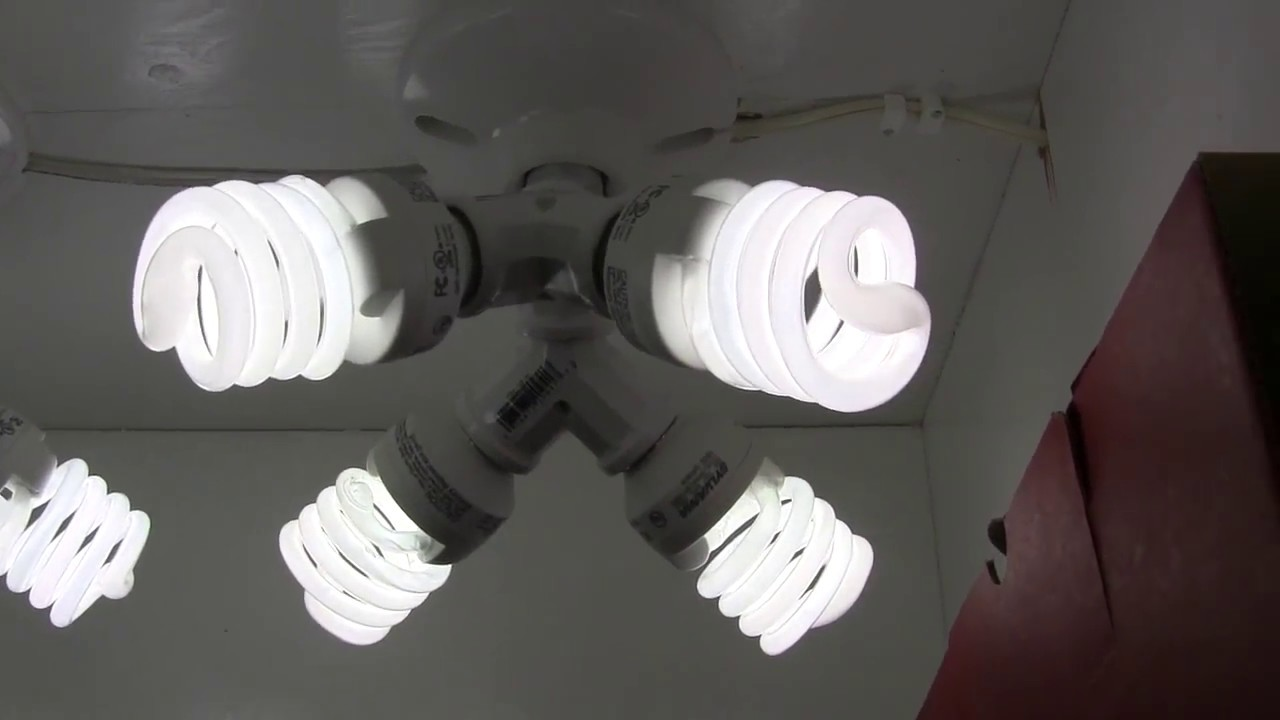 How to Build a 184 Watt CFL Grow Light for Overwintering Plants ...
