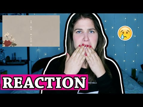 "Shawn Mendes ""In My Blood"" (Audio) 