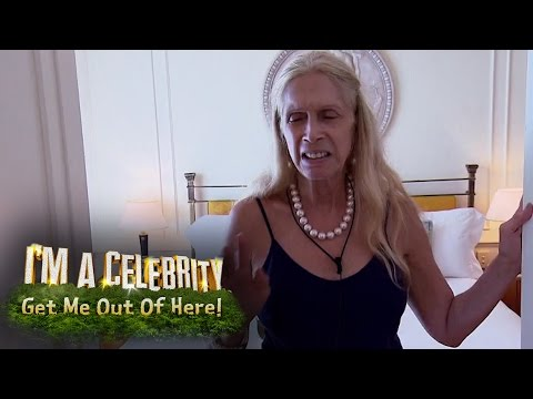 Ant and dec im a celebrity best bits