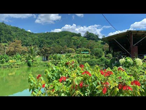 Roadtrip To Broga Hill Part 2: Exotic Durian & Recreational Fishing Park