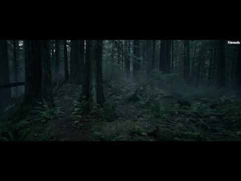 The Revenant (Diriliş) - Ayı Sahnesi