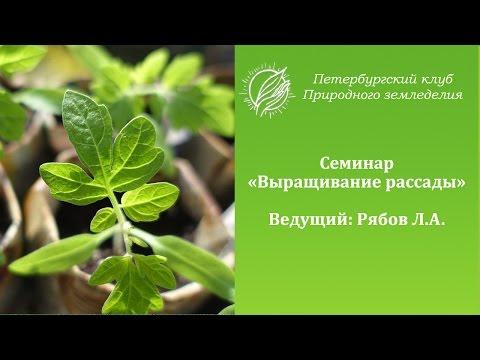 """Семинар """"Выращивание рассады"""""""