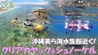 https://goo.gl/wJUvYs 沖縄ダイビング・シュノーケリング予約サイト【...