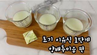 [초기 이유식 1단계] 양배추와 쌀가루로 양배추미음 만…