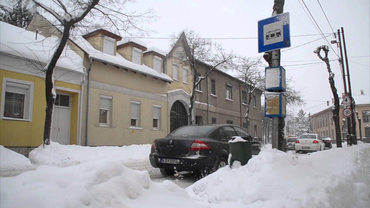 hóes helminták)