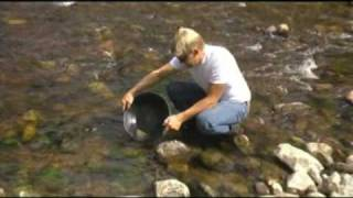 where gold is found recover it with a gold recovery pump