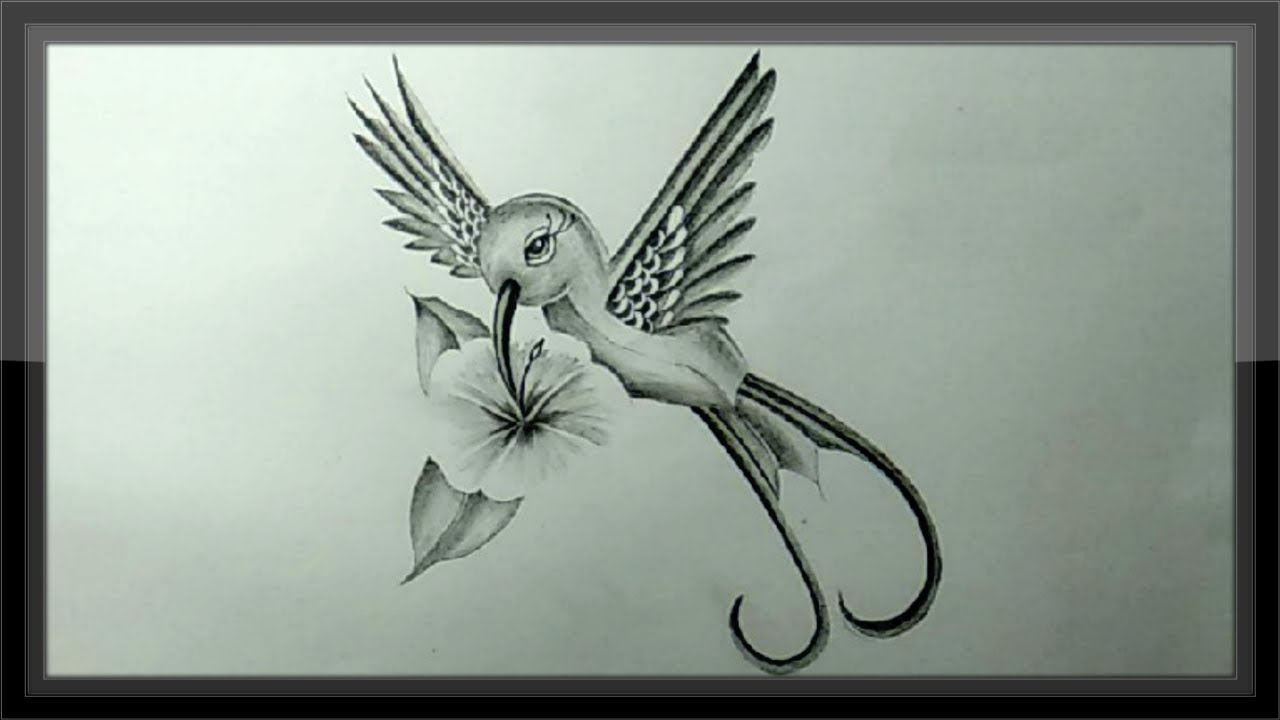 Pencil drawing how to draw a bird for kids step by step easy