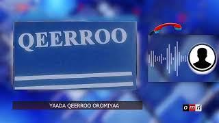 OMN: Yaada Qeerroo Oromiyaa