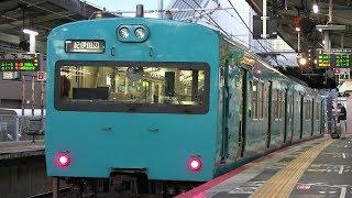 早朝のJR阪和線日根野駅 紀伊田辺行きの113系運用