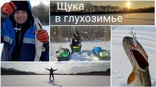 Щука в глухозимье в диких местах на жерлицы и балансир Рыбалка в Беларуси